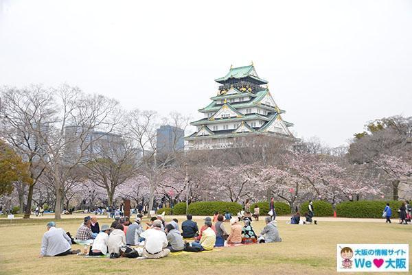 西の丸公園 桜②