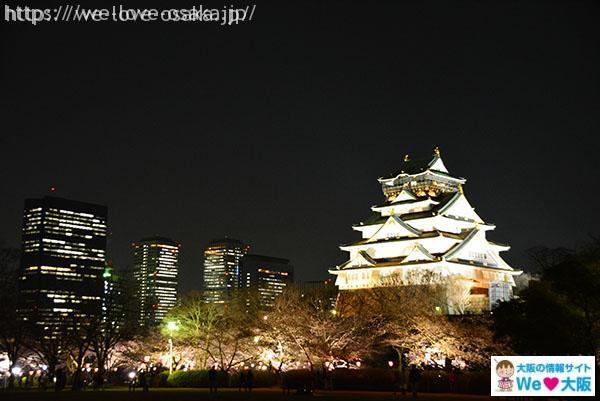 大阪城 夜桜