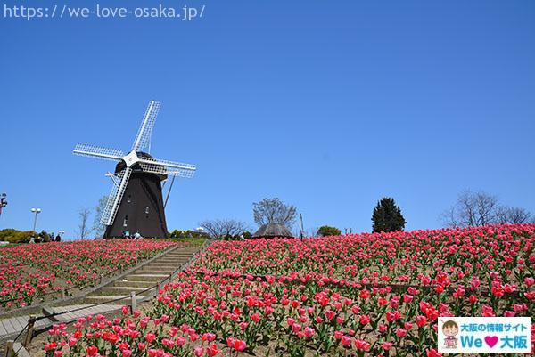 鶴見緑地風車