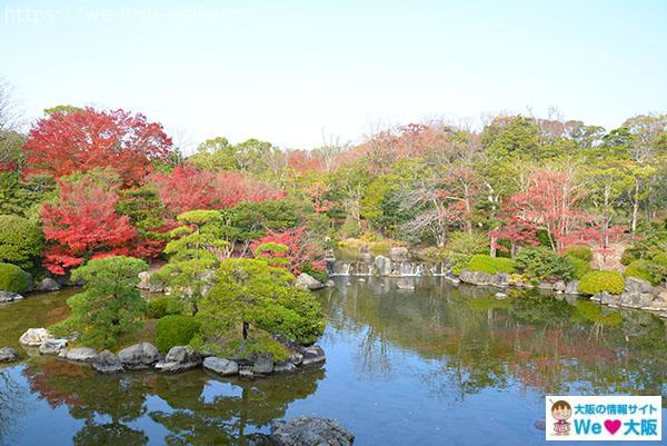 日本庭園②
