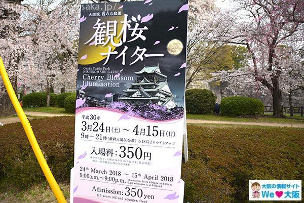 観桜ナイター