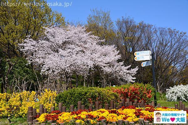 鶴見緑地花