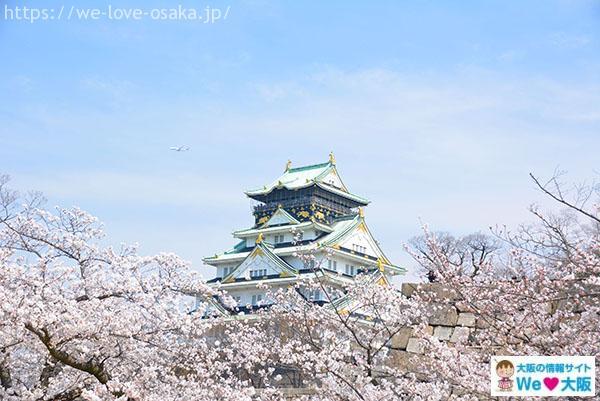 大阪城 桜②
