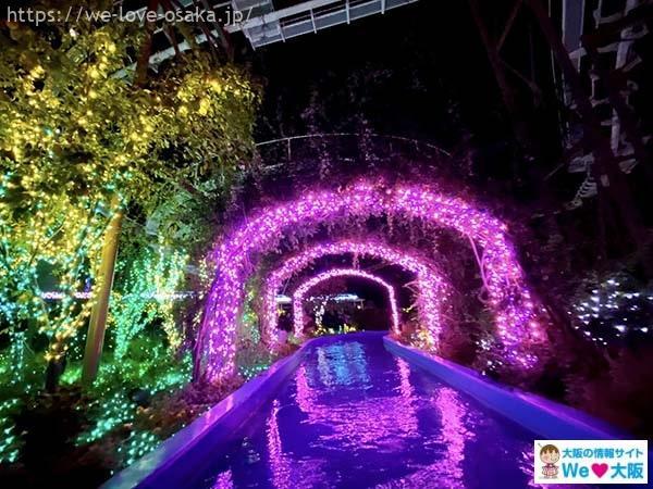 ひらかたパーク光の遊園地