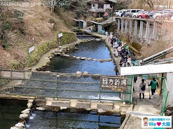 千早川マス釣り場目方釣り