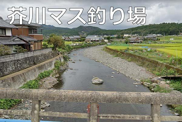 大阪釣り初心者芥川マス釣り場